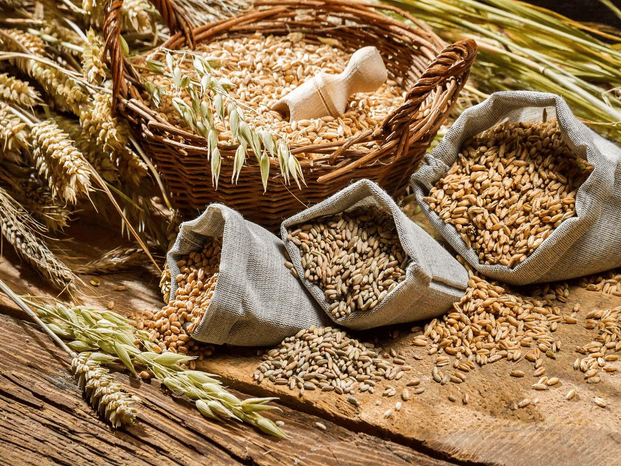 Rusya Tahıl İhracatındaki Vergileri Artırma Kararı Aldı