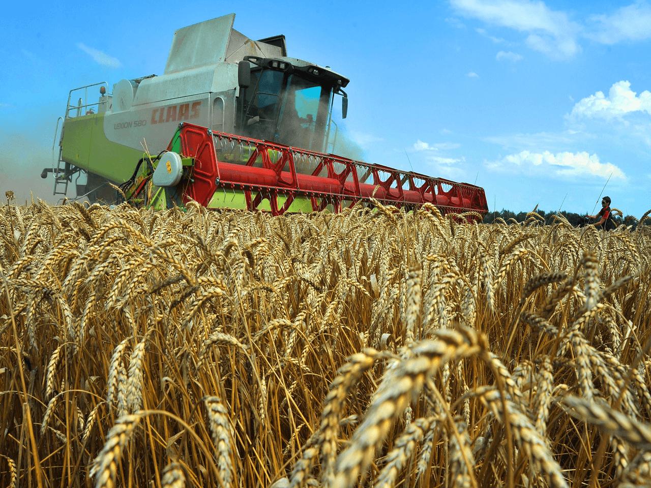 Azerbaycan Menşeli Bazı Tarım Ürünlerine Gümrük Vergisiz İthalat İmkanı Tanındı