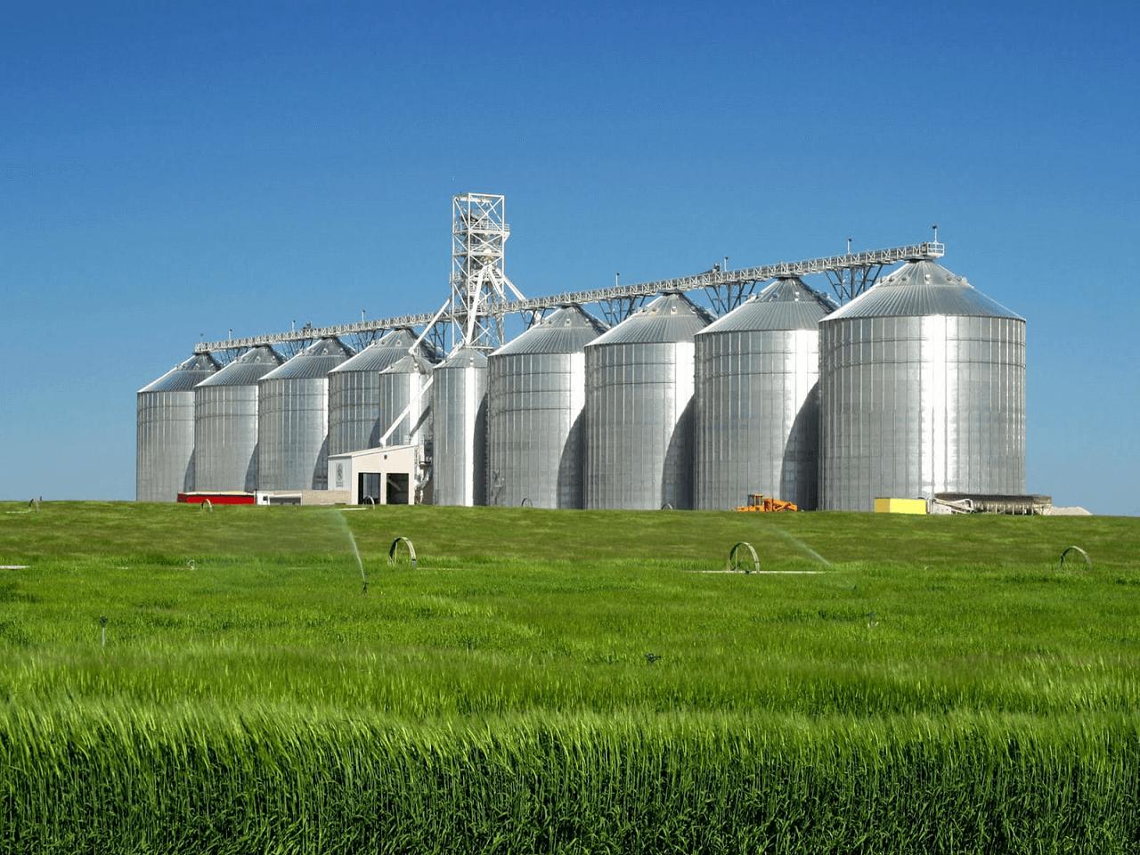 Bazı Tarım ve Hayvancılık Ürünlerinin Dış Ticaretinde Yeni Düzenlemeler Yapıldı