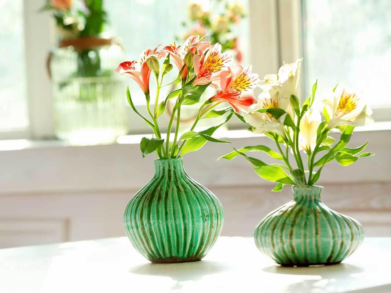 Kesme Çiçek İthalatına Gözetim Uygulaması Getirildi