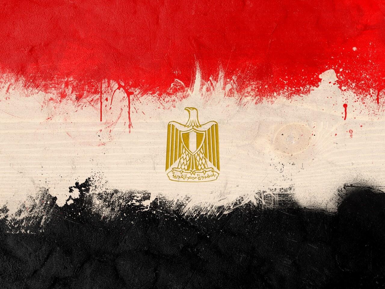 Mısır'ın Hammadde İhracatını Yasaklama Çalışmaları