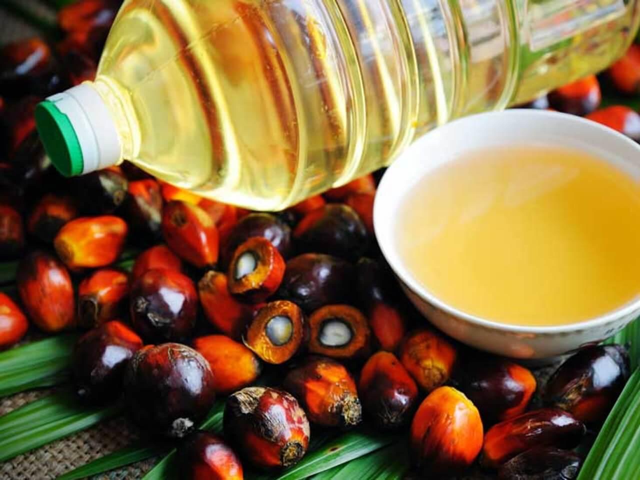Endonezya AB ile Sorun Yaşadığı Palm Yağı İthalatını DTÖ'ye Taşıyor