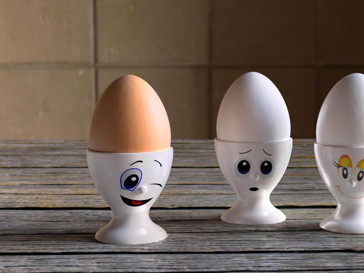Türkiye yumurta ihracatı