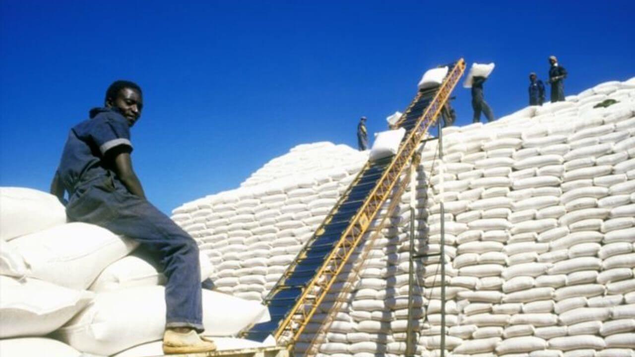 Zimbabve Hükümeti Tahıl İthalatını Askıya Aldı